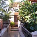 décoration orientale patio riad maroc