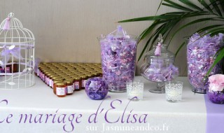 Mariage Elisa et Tristan, 15 Septembre 2012