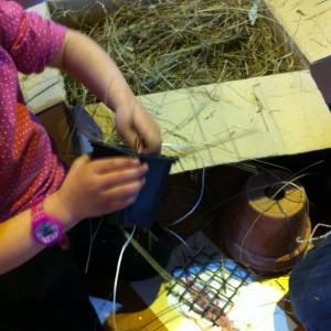 fabriquer maison pour pince oreille