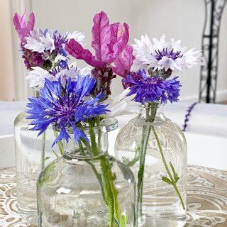 Les petites fleurs du jardin dans des flacons recup' : lavande papillon ( je recommande c'est magnifique ) et nigelle   Belle journée à vous